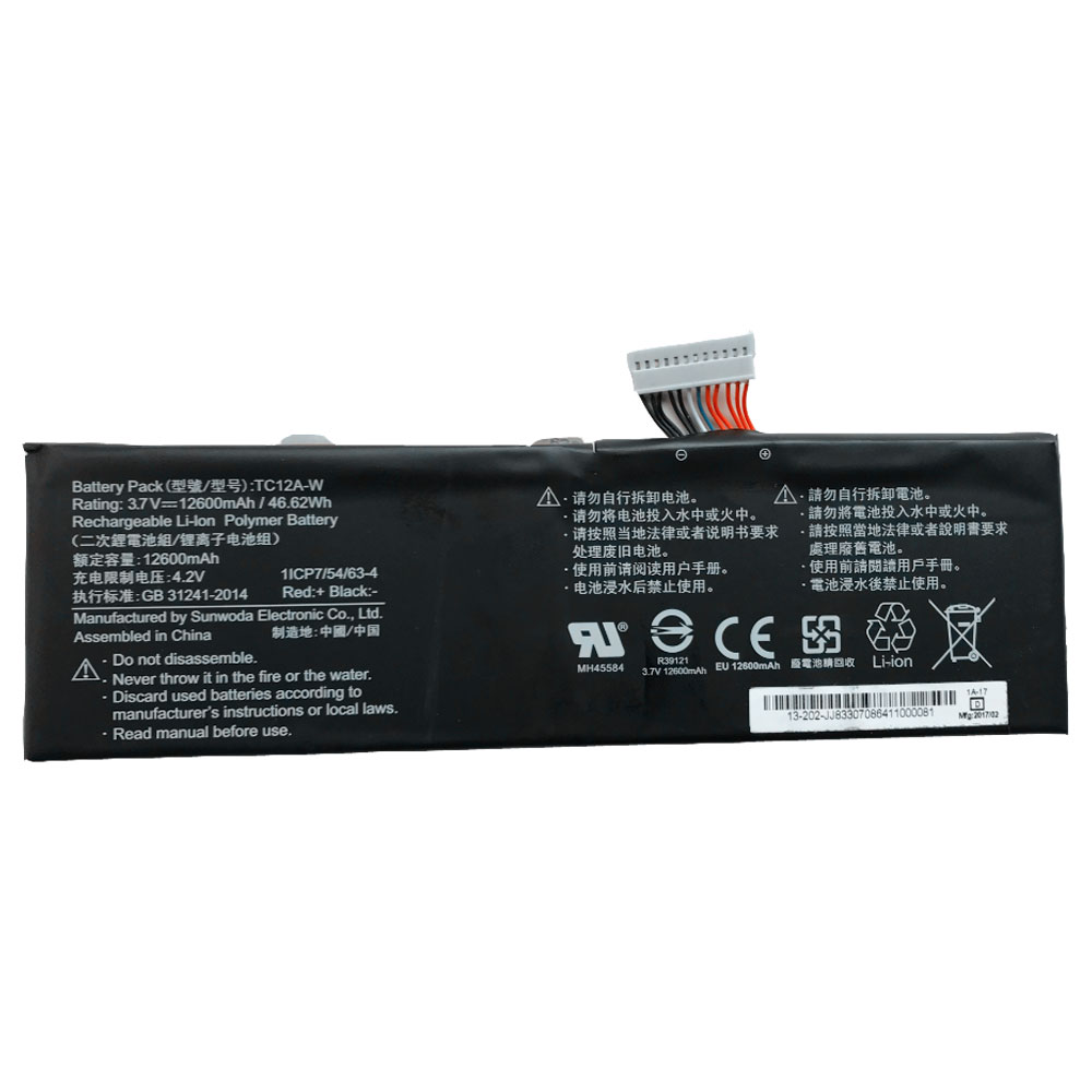 TC12A-W laptop akkus